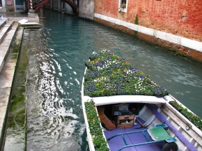 La barca ciega – 48 y un par demeses