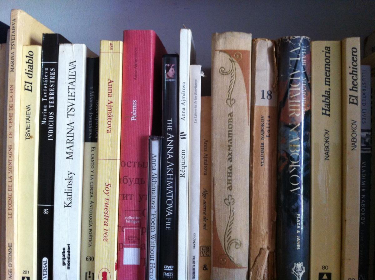 La literatura como experiencia